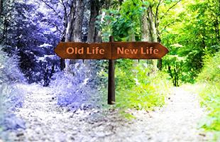 人生の岐路の選択!のイメージ